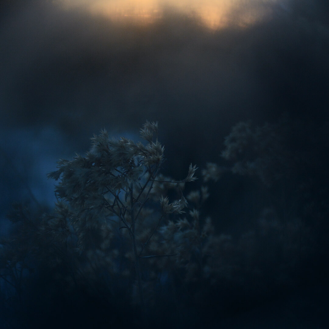 Alexander Hofstetter. Winter Blue I
